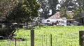 Farm HD Footage