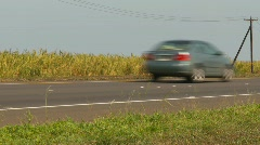 Agriculture, sugar cane field and traffic Stock Footage