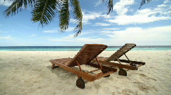 Two beds under palmtree dolly Stock Footage