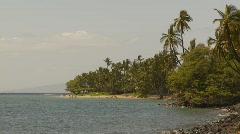 Lahaina, palms water and beach Stock Footage