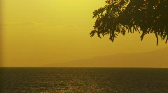 Time-lapse, tropical sunset with trees Stock Footage