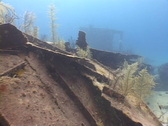 Stock Video Footage of Scuba diver and shipwreck