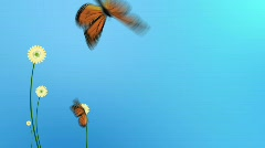 Abstract flowers with butterfly  Stock Footage