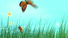 Abstract landscape with butterfly  Stock Footage