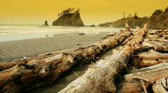 Second Beach Stock Footage