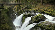 Sol Duc Falls in Olympic National Park in Washington State - Waterfall Stock Footage