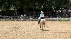 Horse rider in horse show Stock Footage