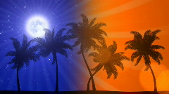 Palm Trees Night / Day (Animated HD Background) Stock Footage