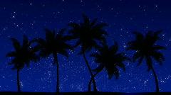 Palm Trees with Stars (Animated HD Background) Stock Footage