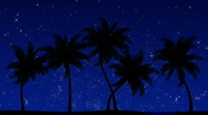 Stock Video Footage of Palm Trees with Stars (Animated HD Background)