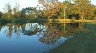 Evening pond 2 hdf Stock Footage