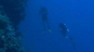 Scuba divers Stock Footage
