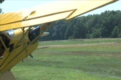 Bird Taxi Past J3 Cub Stock Footage