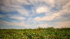 Grass_under_the_sky Stock Footage