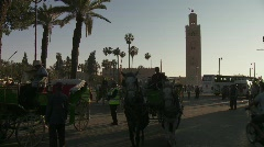 Horse & carriage carries tourists in Marrakech - stock footage