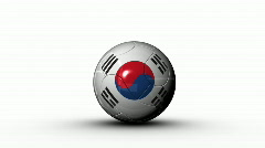 world cup SOUTH KOREA - stock footage