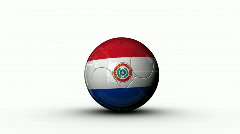world cup PARAGUAY - stock footage