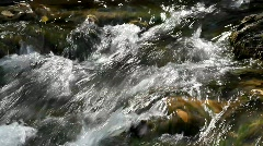 Closeup detail of running water in the Carpathians Mountains - stock footage