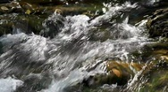 Closeup detail of running water in the Carpathians Mountains Stock Footage
