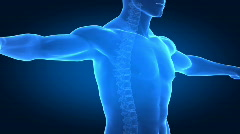 Correct posture concept with highlighted spine Stock Footage