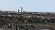 P00948 Large Cattle Feedlot in Nebraska Stock Footage
