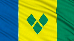 Saint Vincent and the Grenadines fla, with real structure of a fabric Stock Footage