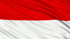 Monaco flag, with real structure of a fabric - stock footage