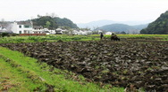 Wuyuan Stock Footage