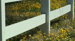 White Picket Fence Stock Footage