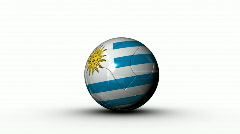world cup URUGUAY - stock footage