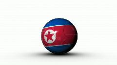 World cup NORTH KOREA Stock Footage