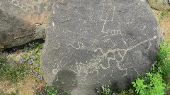 Ancient Arizona Petroglyphs  Stock Footage