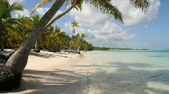 Dominican Republic: Palm studded beach Stock Footage