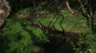 Stock Video Footage of Time lapse of shadows casting on an small Icelandic brook