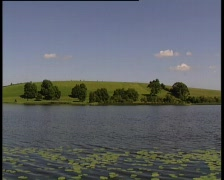 Lily Pad Lake Wide Stock Footage