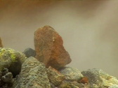 Stock Video Footage of Steaming Rock Vent