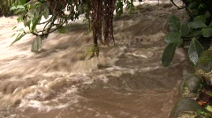Rio Mindo, Ecuador in flood Stock Footage