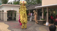 Imlek with Tiger Dance Stock Footage
