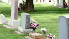 Old Graveyard 0844 Stock Footage