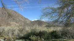 Anza Borrego Mountain view with branches Stock Footage
