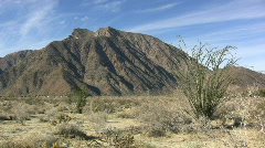 Anza Borrego ocotillo and mountain Stock Footage