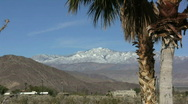Stock Video Footage of Anza Borrego palms and mountains