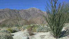 California desert at Anza Borrego view Stock Footage