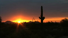 Arizona desert with sun Stock Footage