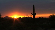 Stock Video Footage of Arizona desert with sun