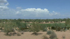 Arizona golf course and shrubs Stock Footage
