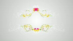 Flourish white  2 Stock Footage