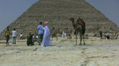 Egypt Great Pyramid and camel Stock Footage