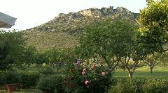 Garden & hill Terracina area Stock Footage