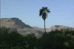 Galilee landscape Israel - stock footage